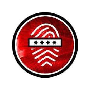 logo de Timeless