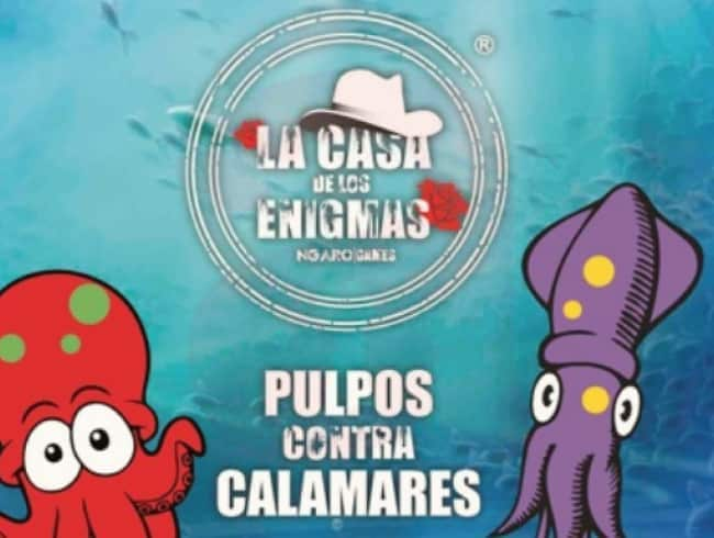 escape room: AGV: Pulpos vs Calamares