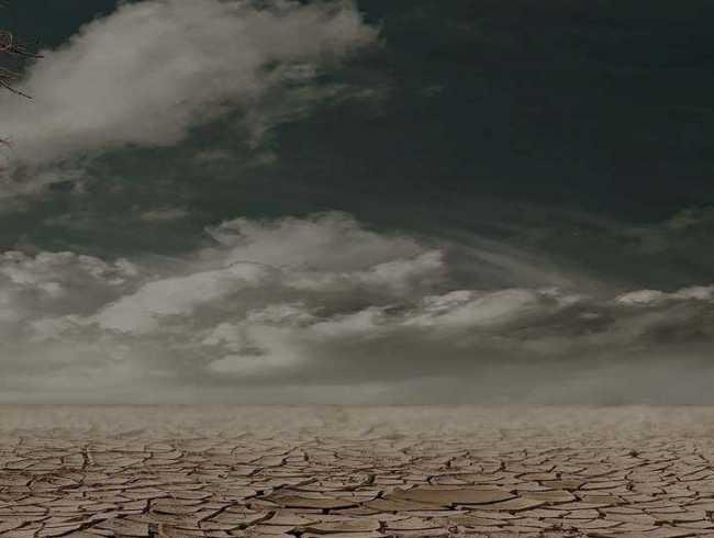 escape room: Apocalipsis Natura