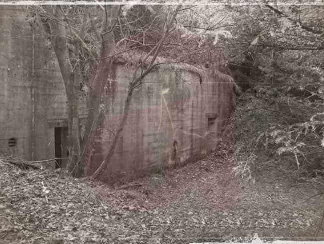 escape room: El refugio
